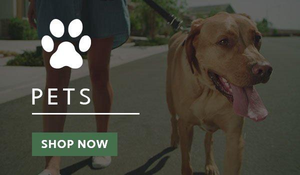 Pets Shop Link Picture